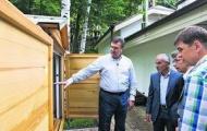 Виктор Янукович спит с пчелами