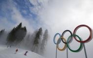 Украинцы уже завоевали в Сочи 4 «золота», но не для Украины