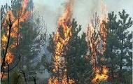 Украине угрожают пожары