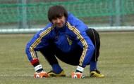Александр Шовковский покинет сборную Украины после Евро-2012